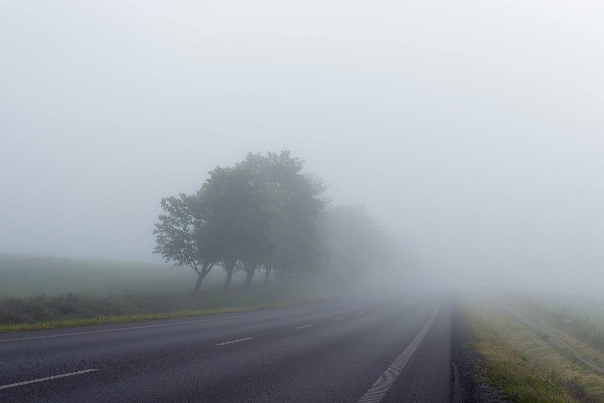 مه در جاده